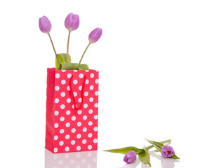 three purple tulips in a little shopping bag isolated over white