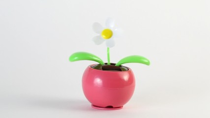 Toy flower moves, this working on solar battery