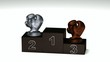 Boxing dark wood podium with trophies on a white floor