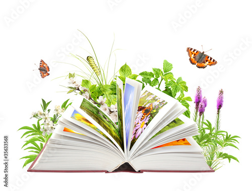 Book of nature - 35633568
