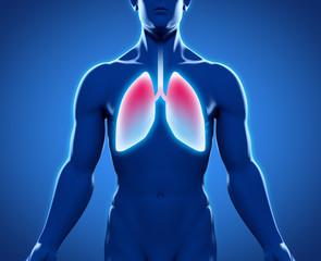 Silhouette junges Mannes mit Lungen