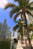 Scenic downtown Miami River cityscape poster