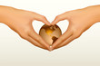Woman's hands made in the form of heart. Vector illustration