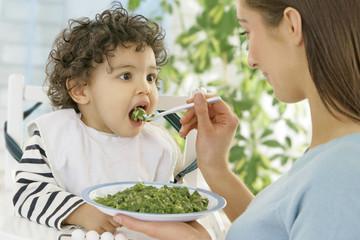 Bébé : Repas - légumes & jambon