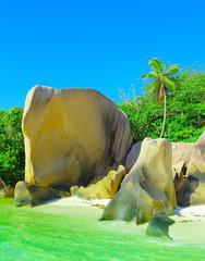 Exotic Summer Beach
