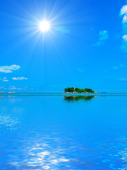 Beautiful Wallpaper Blue Paradise