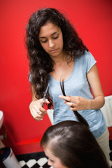 Portrait of a young female hairdresser cutting hair