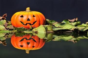 Calabaza de Halloween  reflejada en el bosque.