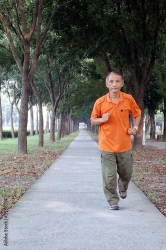 photo 林荫下的跑步者高清图片