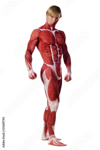 Muscle man. Bodyart