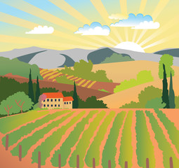 Summer solar rural landscape, sunset, vineyard and mountains