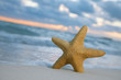 starfish on beach, blue sea and sunrise