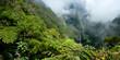 Le Trou de Fer - Ile de La Réunion