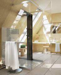 Shower designed in the bathroom