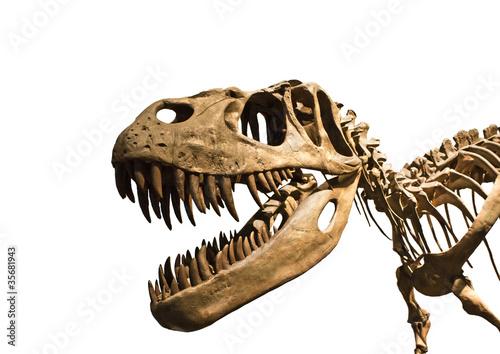 canvas print picture Esqueleto de tiranosaurio Rex