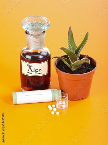 Aloe Ferox plant, extract and homeopathic pills