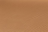 Soil detail, in the Sossusvlei sand dunes, Namib desert