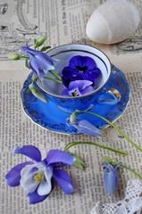 Blüten in antker Tasse