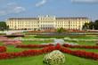 Parterre de fleurs à Schonbrunn