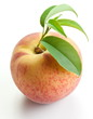 Ripe peach with leaves