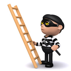 3d Burglar climbs a ladder into the property