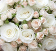 Leinwanddruck Bild - Wedding bouquet of pinkand white  roses