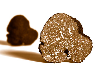 section of black truffle