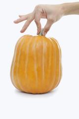 Hand holding a pumpkin