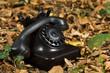 Old phone on autumn leafs