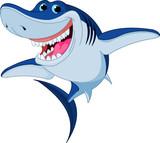 Fototapeta zwierzę - wodnych - Ryba