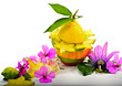 Funny fruit composition with flowers