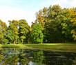 Lake in autumn park