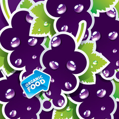Background from currant with the arrow by organic food. Vector.