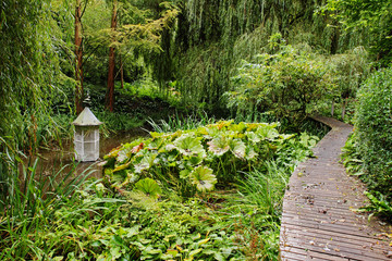 An English woodland Garden with boardwalk