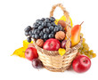 autumnal fruit in basket