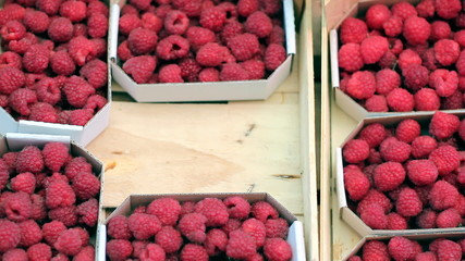 Ripe Raspberries For Sale
