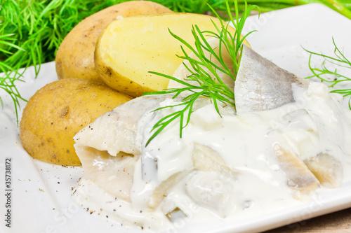 Sahneheringe mit Kartoffeln und Dill - 35738172