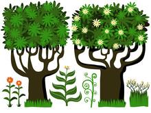 les arbres et les fleurs des plantes de consigne