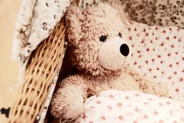 sepia_teddy