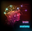 human brain background light design