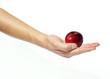 Mano che tiene una mela rossa, fondo bianco