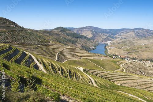 Papiers peints Canyon Douro region