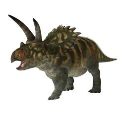 Coahuilaceratops 01