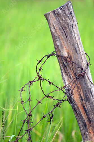 wood and barbed wire