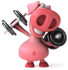 Cochon et poids