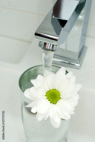 Chrome tap water and flower