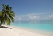 Fototapeten,strand,türkis,maldives,traum