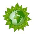 緑葉の上の地球