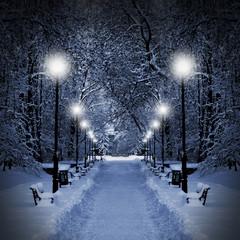 Park at Christmas