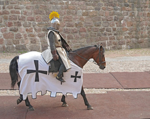 The horse knight in an armor, going on a horse
